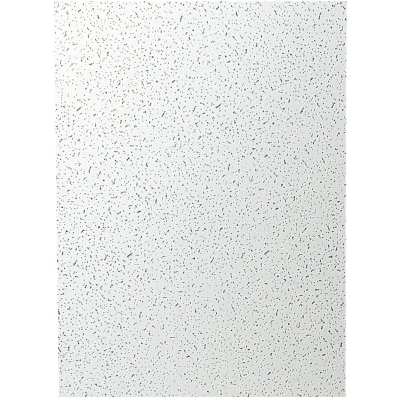 Plateau 2 Ft. x 4 Ft. White Mineral Fiber Ceiling Tile (8-Count) Image 3